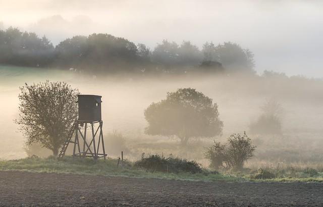 *Eifel - Nebel*