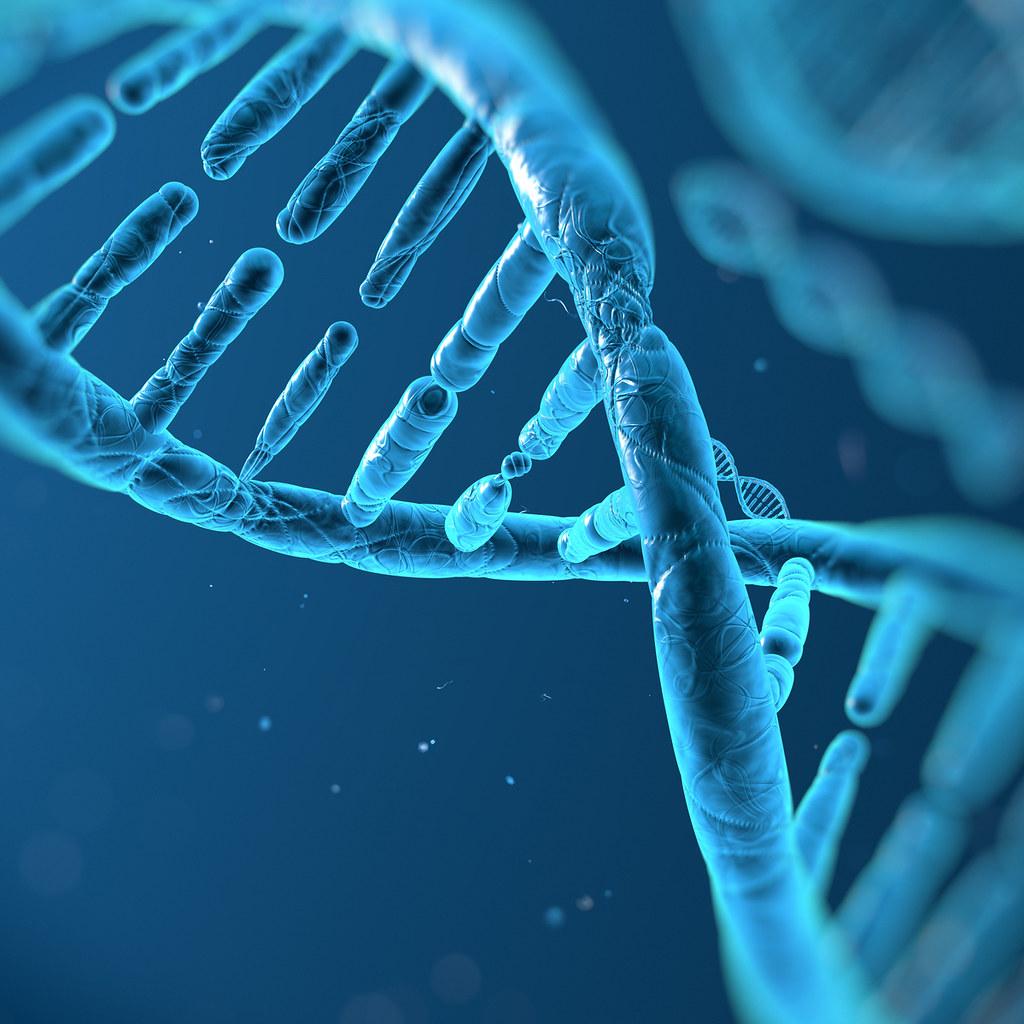DNA螺旋