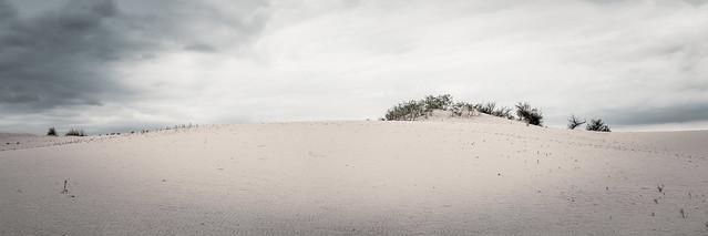 In the Sandhills
