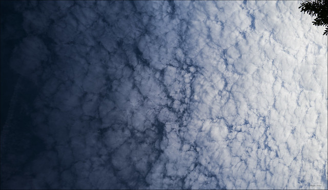 Clouds Leica Q .