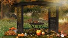 Fall athmosphere