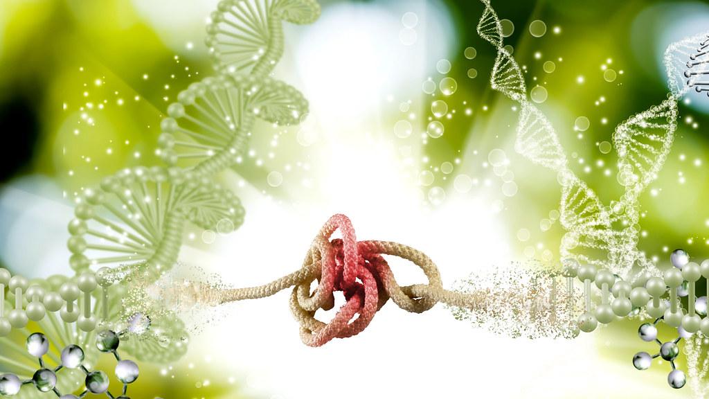 插图的DNA螺旋与缠结在中间的绳子