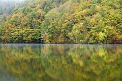 Fishing park in autumn