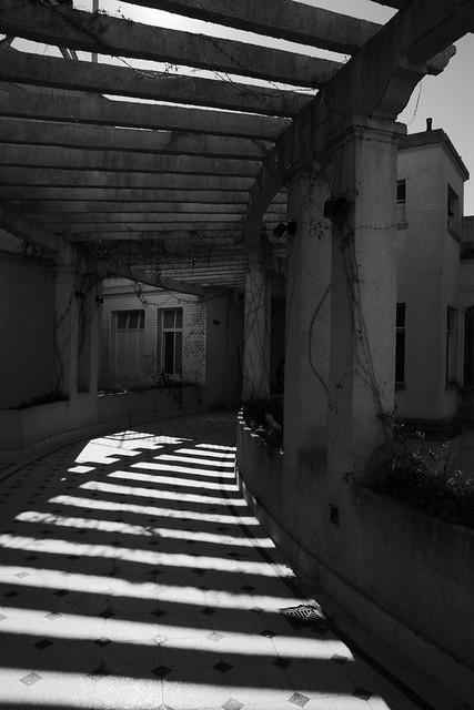Contrastes entre luces y sombras