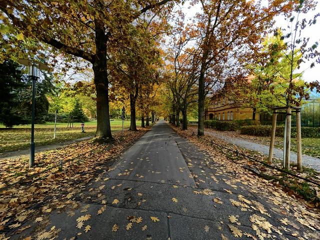Herbst an der Marzahner Augenklinik am 18.10.2021 in Berlin Marzahn