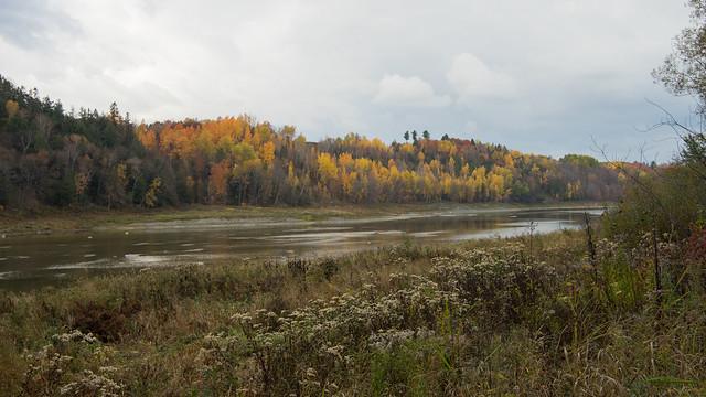 Rivière Chaudière, automne, Beauce, PQ, Canada - 07962