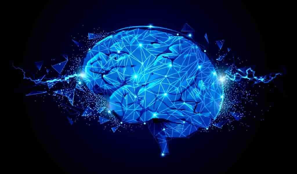 Un traitement potentiel contre l'épilepsie
