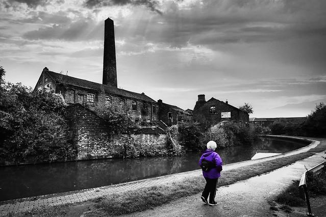 Purple Walks (Explored)