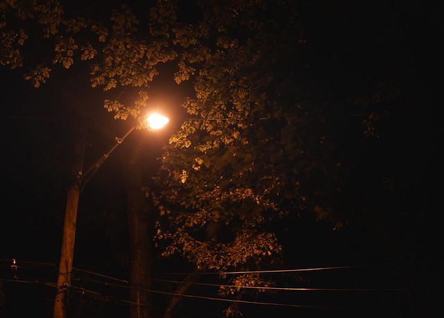 Streetlight Nightfall