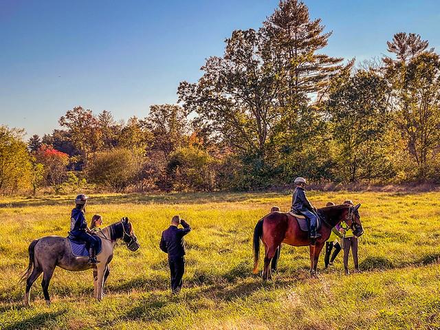 POTD 365:019 Horses on the trails