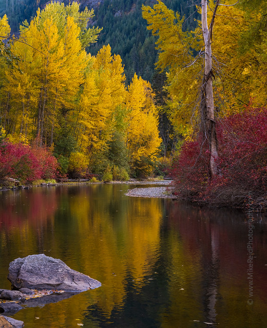 Around the Bend Autumn