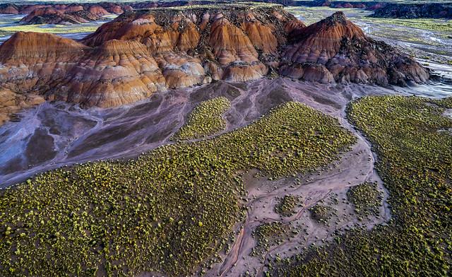 Painted Desert after a rain
