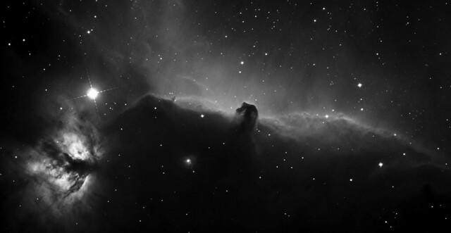 The Horse Head Nebula IC 434 and Flame Nebula NGC 2024: H-alpha, Mono - June 2008