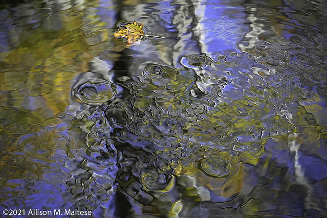 Water Patterns in the Stream