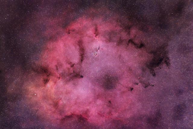 IC 1396, The Elephant's Trunk Nebula, Cep