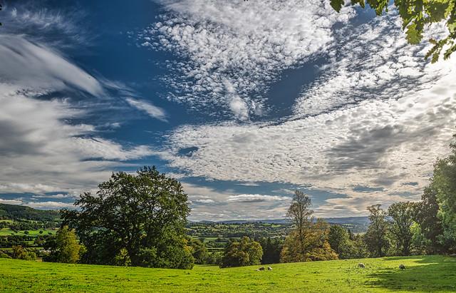 Powys Landscape