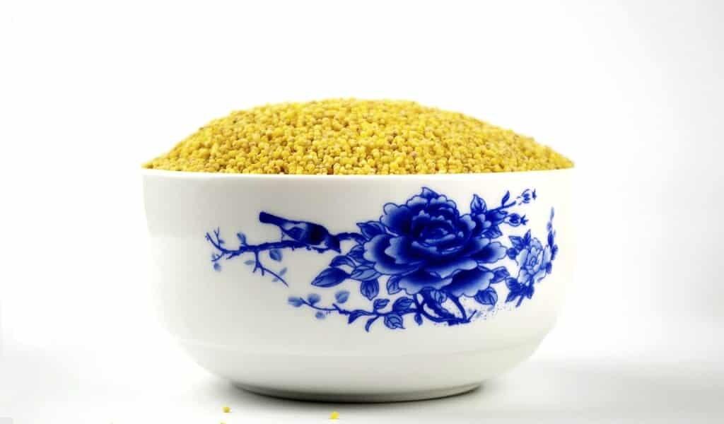 La consommation régulière de millet peut combattre l'anémie