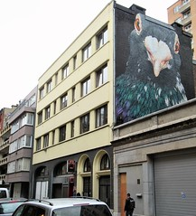 When you have that feeling like someone is looking at you... #mural by @adelerenault in #liu00e8ge . #streetart #urbanart #streetartliege #streetartliegeois #visitliege #muralart #graffitiart #streetartbelgium #graffitibelgium #urbanart_daily #graffitiart_dai
