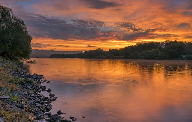 *Golden morning by the river II*
