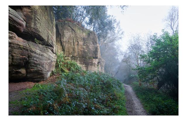 Mist lifting on Eridge Rocks