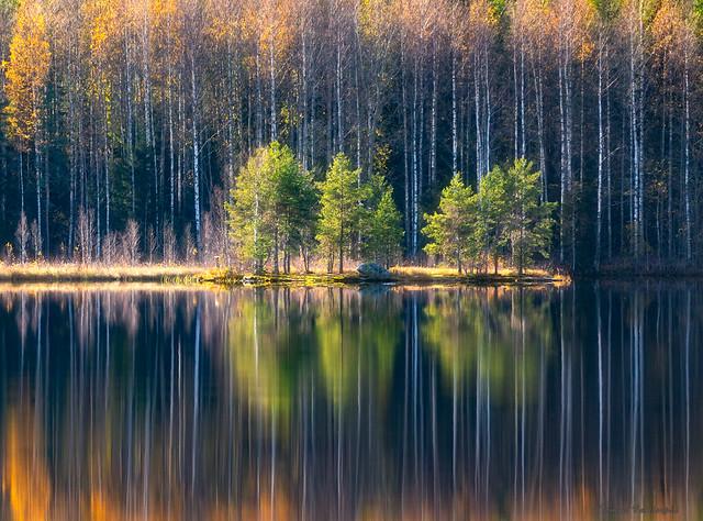 Little Island Reflection