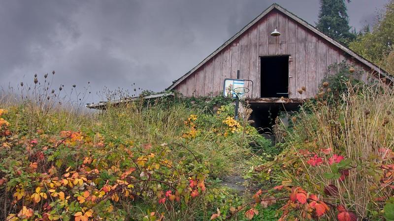 Autumn Barn Hoop 5063 B