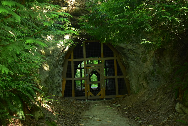 Motor Tunnel