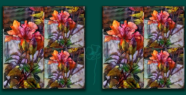Blooming Hibiscus
