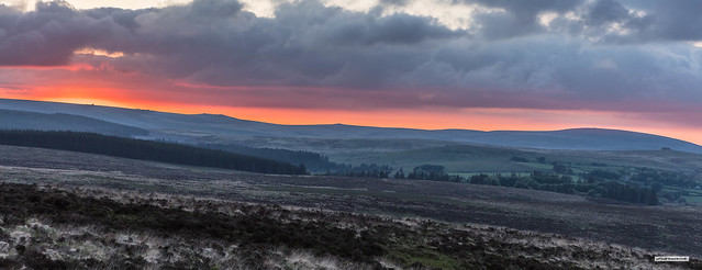 Looking north-west from 440 metres across Fernworthy Forest towards some the highest Tors in Dartmoor at over 600 metres.