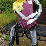 CAN-dice - #BoroScarecrowFestival21