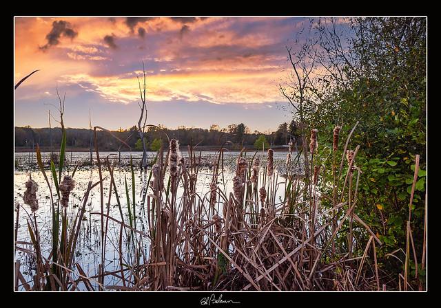 Autumn at the Beaver Marsh