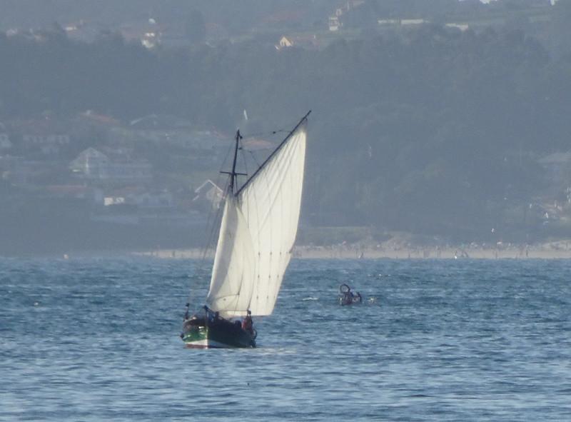 Barca de vela