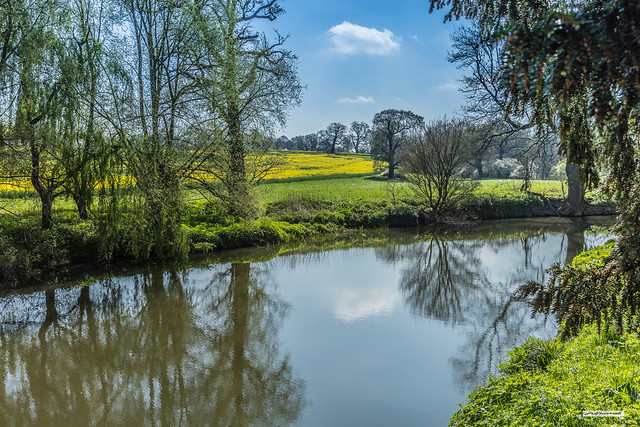 A rural scene in Spring of the River Mole from Betchworth Bridge, Surrey, England.