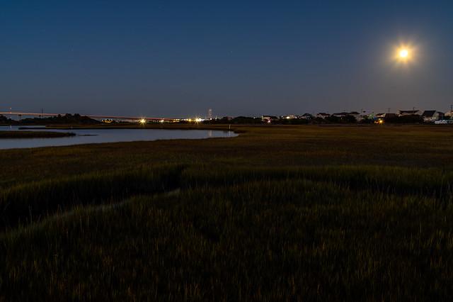 Moonlight over the Marsh