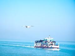 Ship journey in ocean