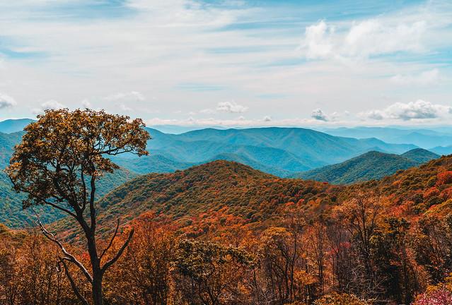 Blue Ridge Fall