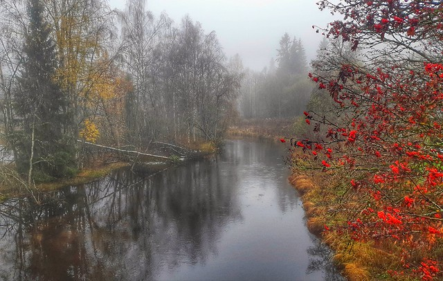 Late autumn riverside