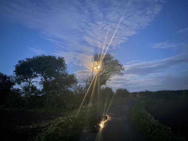 Moon beams on Romney Marsh