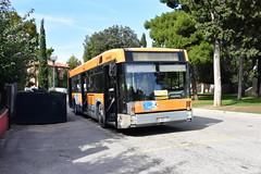 AMI Urbino 178
