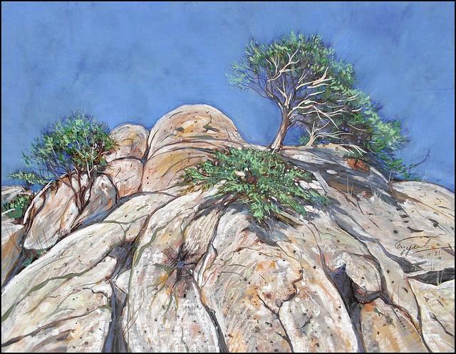 PINE TREES ON THE ROCKS OF DEMIRDZHI-YAYLA
