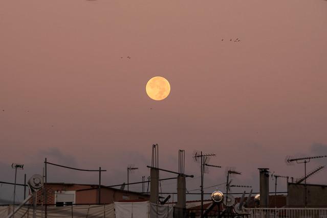 urban moonset