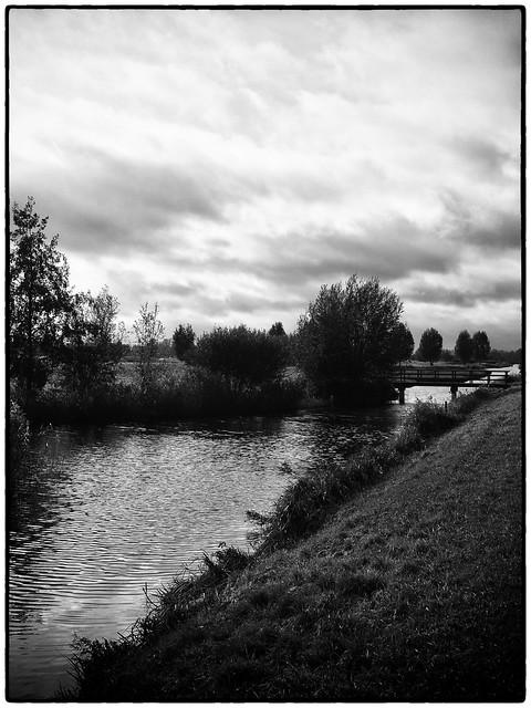 Landscape    Black and White #011