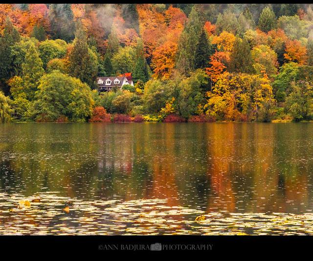 Fall colours at Deer Lake near Vancouver, BC, Canada