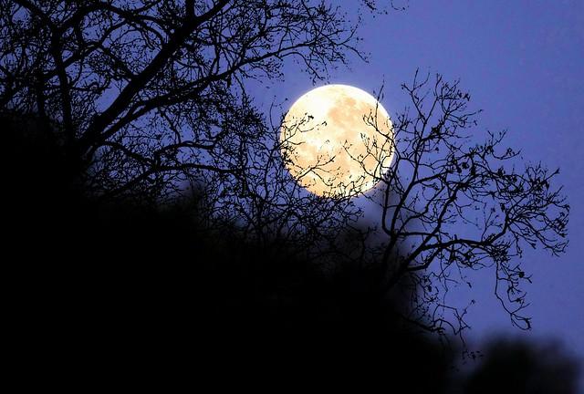 This morning's dawn Moonset at 6:15am, 22/10/21