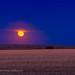 Hunter's Moonrise