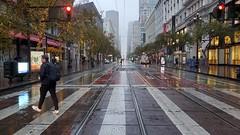 A rain-soaked SF? :bridge_at_night::umbrella: Could it be?