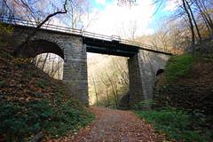 Two Sides of the Same Autumn Railway Bridge Nr2
