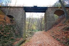 Two Sides of the Same Autumn Railway Bridge Nr1