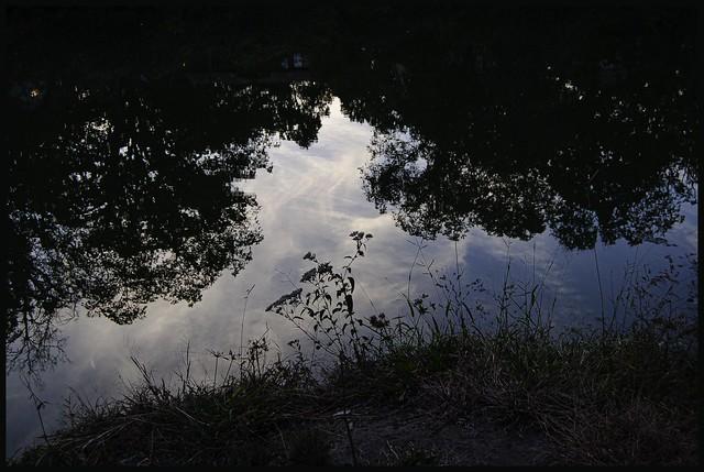 Lake Shore at Twilight