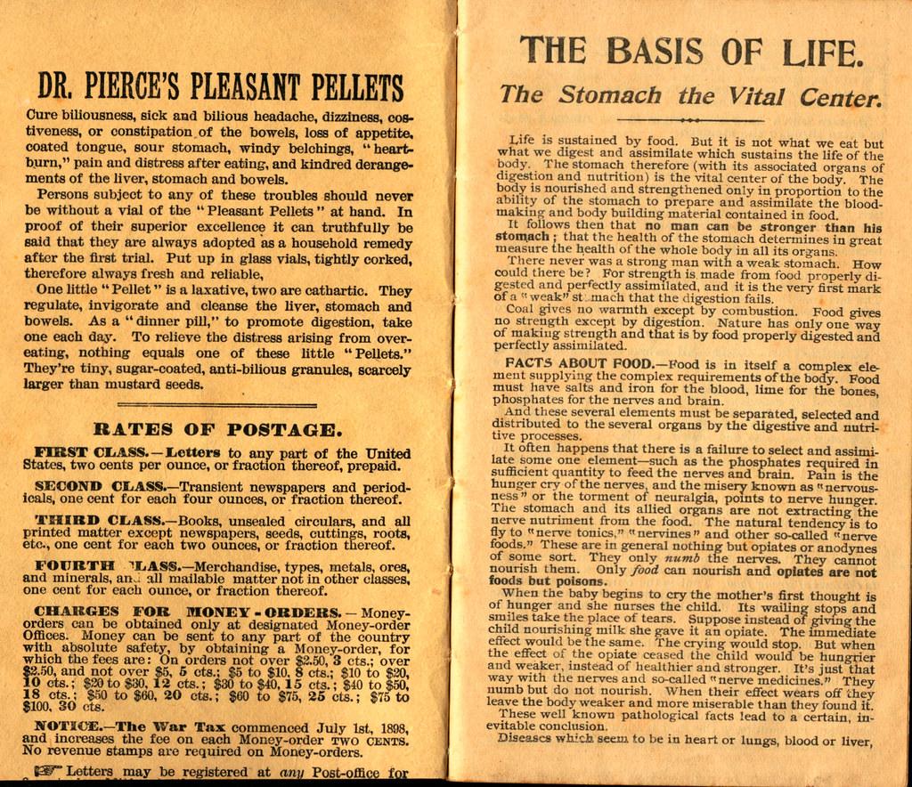 Pierce's Memorandum and Account Book designed for Farmers, Mechanics, and All People, 1900 p. 2